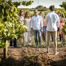 Wine tourism at the Nadal Winery