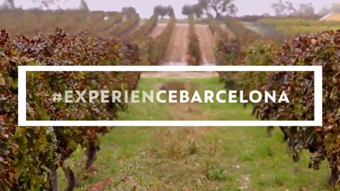 Autumn's here to bring you a new # ExperienceBarcelona
