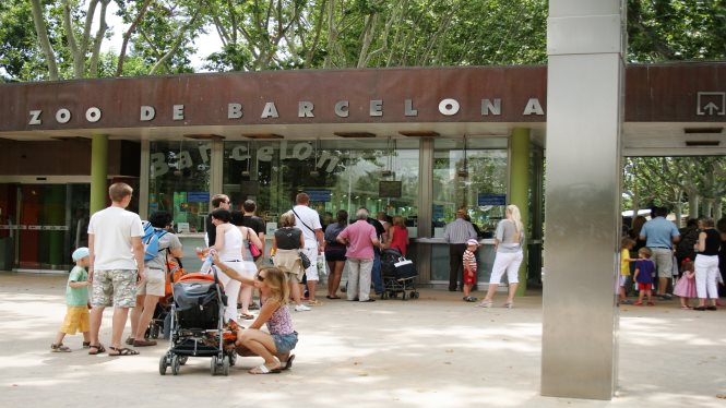 Family activities at Zoo de Barcelona