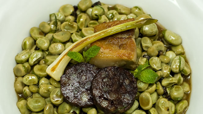 Catalan broad bean stew