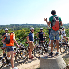 Wine tourism and cycling through the Penedès