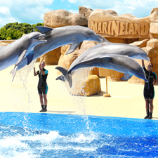 Marineland Water Park